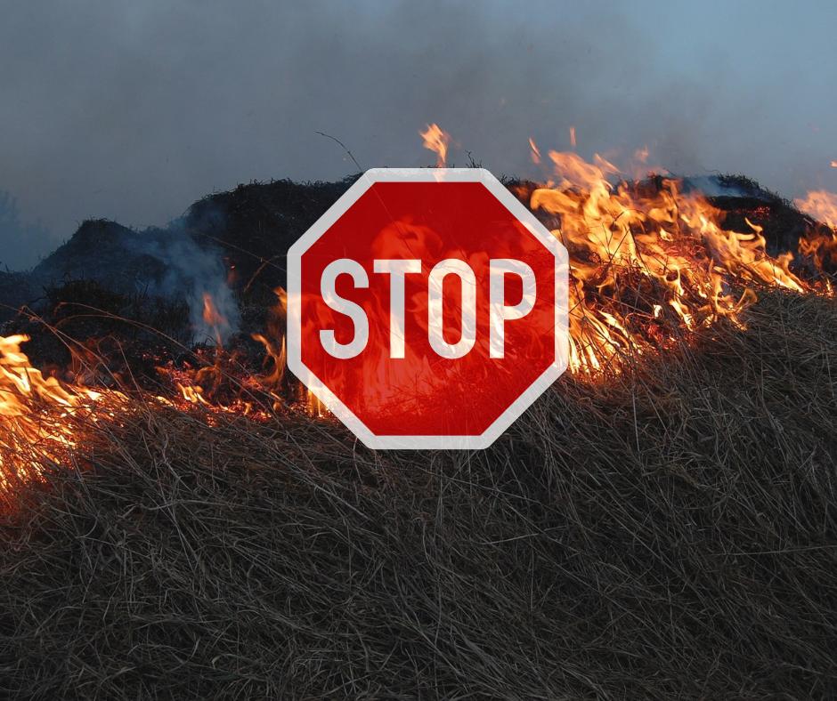 obrazek przedstawia palącą się trawę a a tym znak stop.